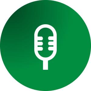 icon-voz